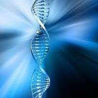 A picture of the 22 DNA Strand Helix