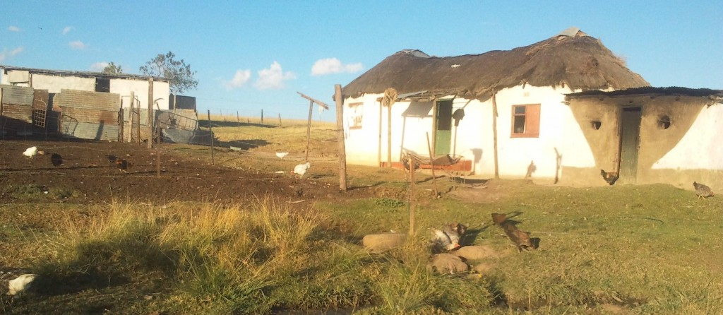 Thokozile's family home