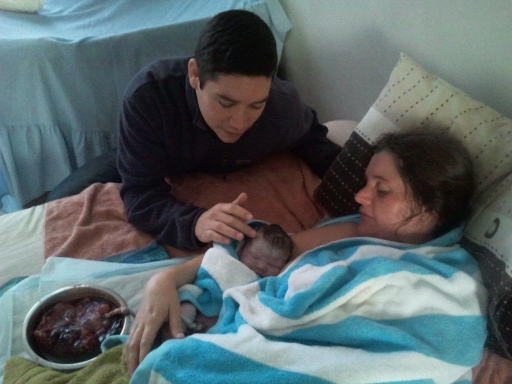 Placenta Birth Placenta and cord still